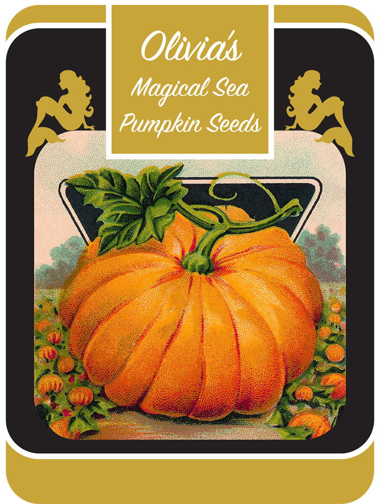 Olivia's Magical Sea Pumpkin Seeds